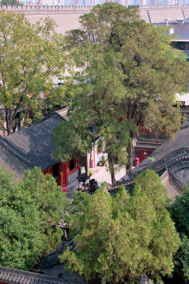 20082018_2031 View of a temple, just inside the city walls and close to XiBeiYi Lu.