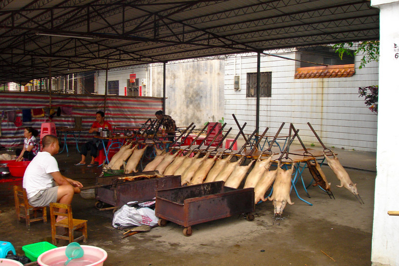This was a small market very close to Tong's parents place - he has a lot of pigs to cook!