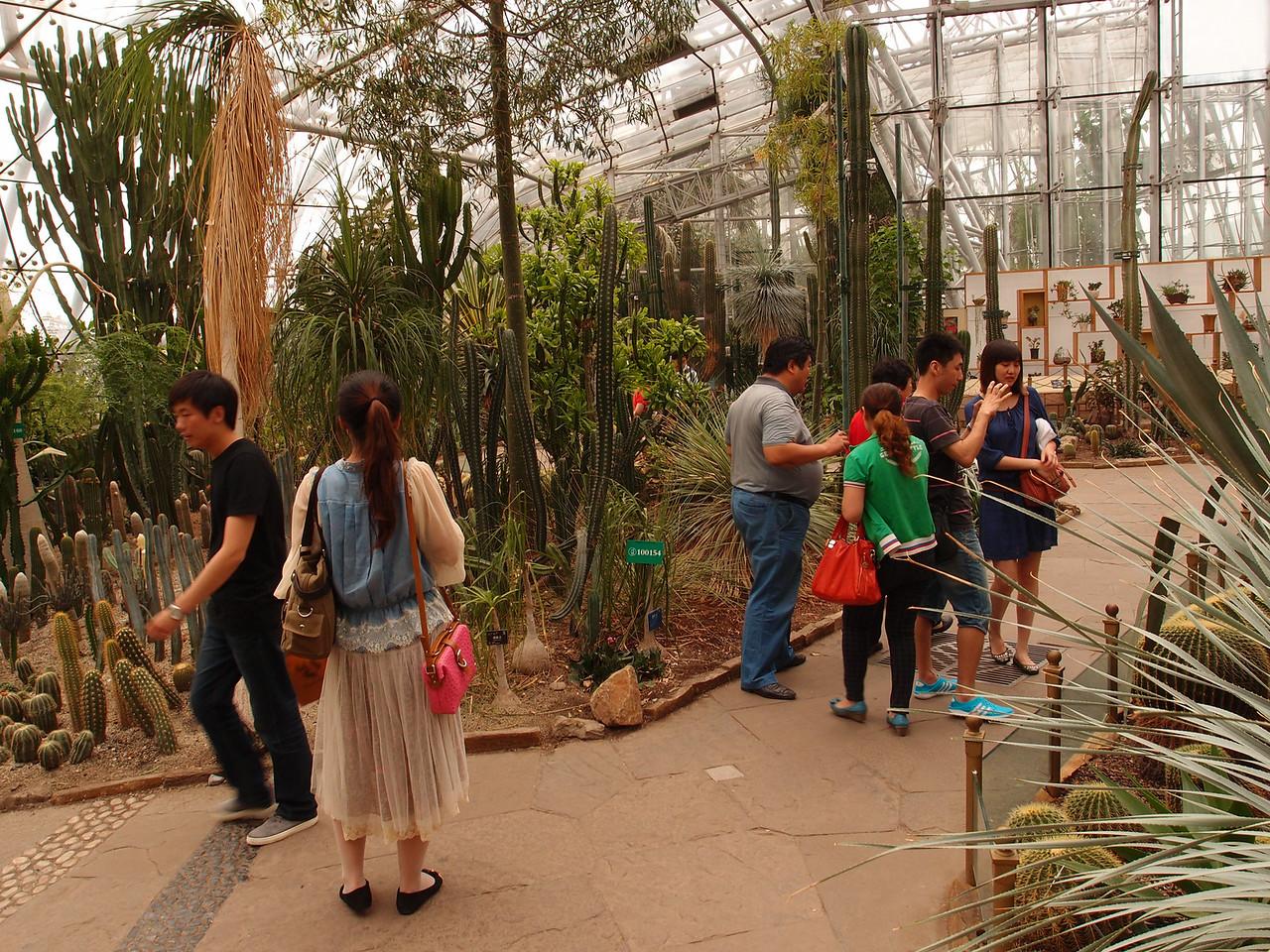 20120513_1502_0447 Beijing Botanical Gardens (glasshouse)