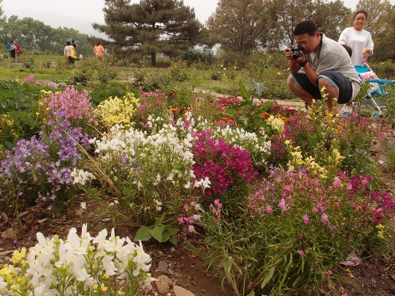 20120513_1334_0343 北京植物园
