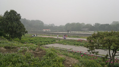 20120513_1000 YuanMingYuan 圆明园 Old Summer Palace. Peony garden on the site of an old (destroyed) hall