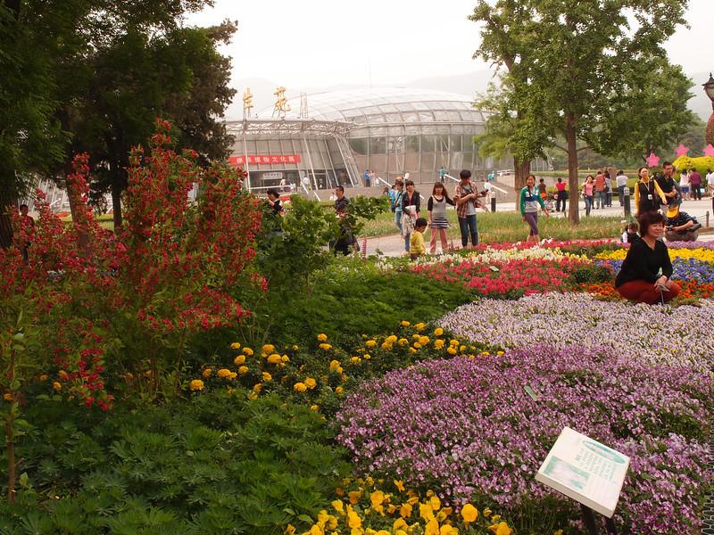 20120513_1433_0412 北京植物园 Beijing Botanical Gardens