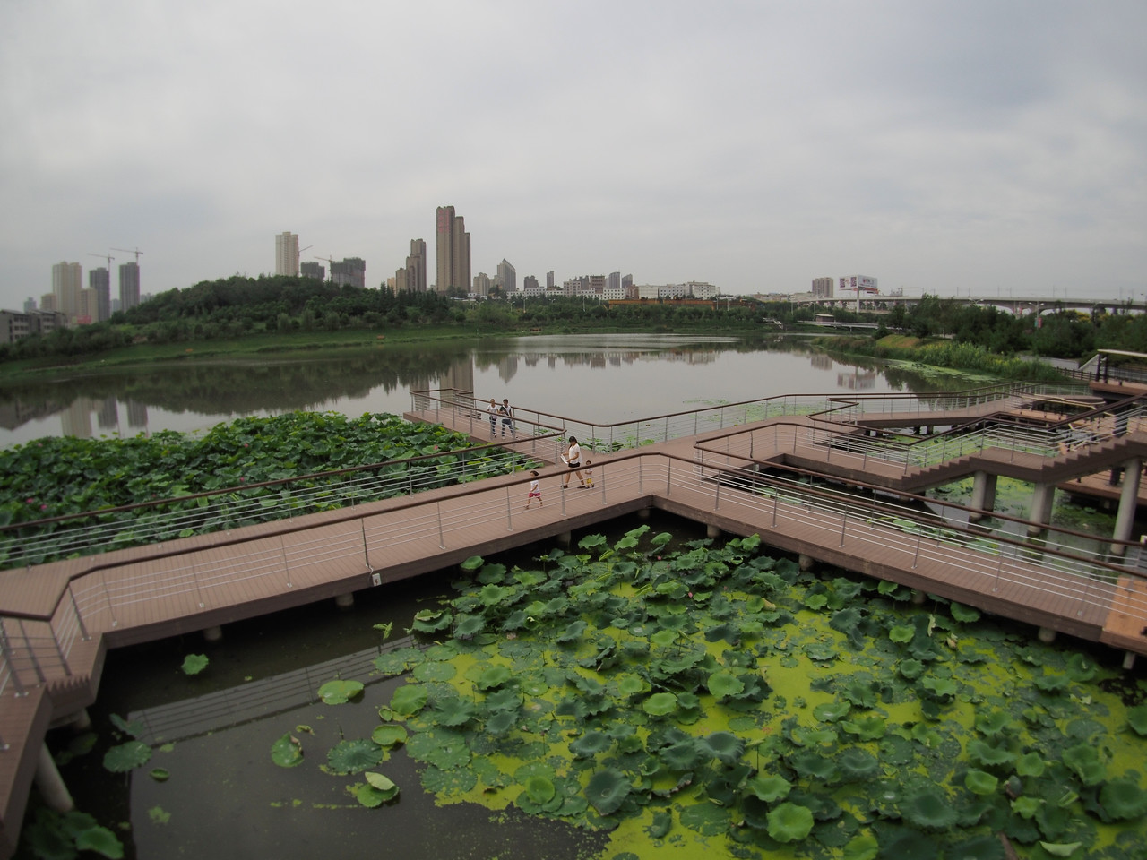 20150905_1301_1672 滻河 ChanHe Park, Xi'an