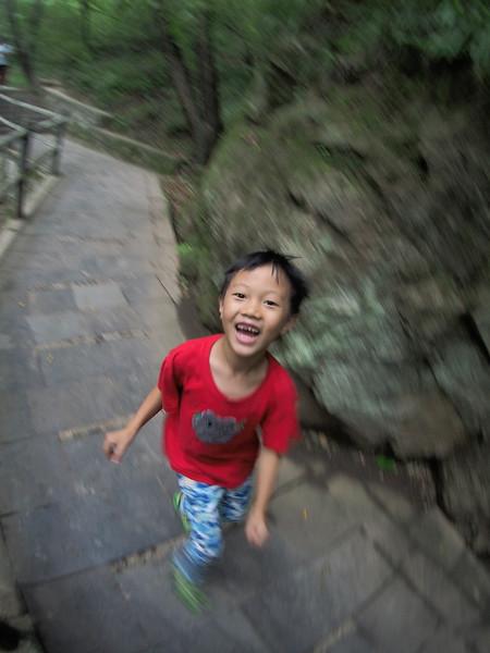 20150828_1414_1478 牛背梁 NiuBeiliang National Forest Park