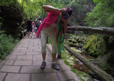 20150828_1141_1413  牛背梁 Portrait at NiuBeiliang National Forest Park, Shaanxi