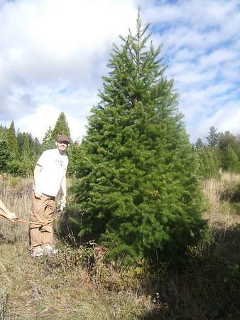 Christmas Tree Hunting - 12-8-07