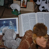 """""""Reverend Lion"""" reads the story of Jesus' birth at the stuffed animal nativity scene"""