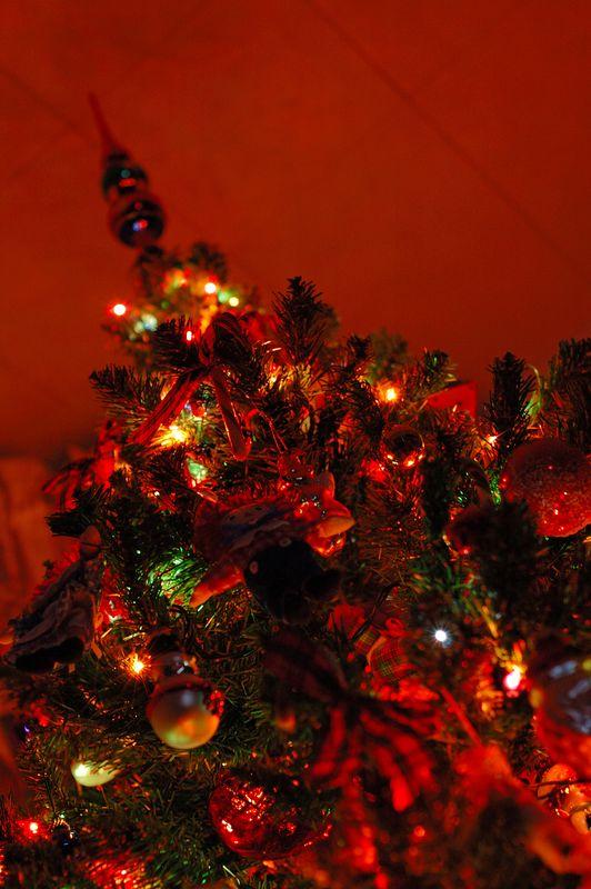Christmas 2004 - Henrietta