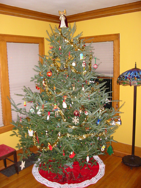 Our oversized Christmas tree.  It didn't look so big at the tree farm, but we had to saw a foot off the bottom and top it to get it to fit!