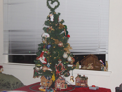 2007 - Steve and my First Christmas tree