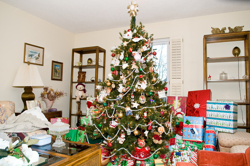 Family Christmas -0921