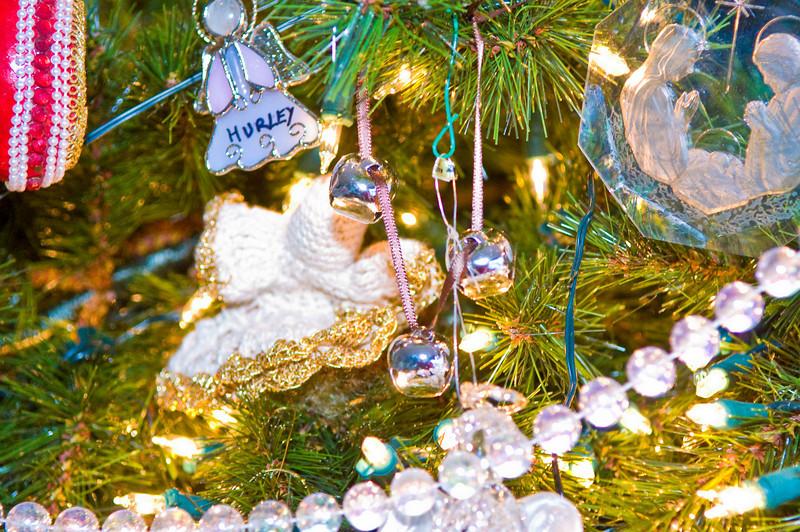 Family Christmas -0902-Edit