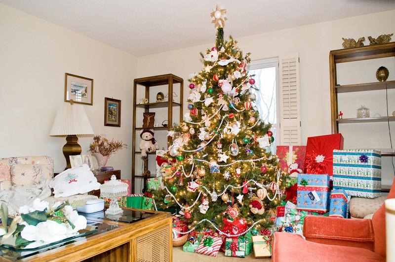 Family Christmas -0911