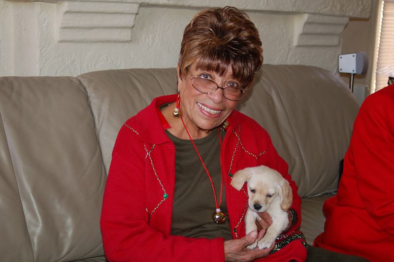 """This is the story of Adele Mathias, AKA Grandmother.  Her middle name is Christmas--for years she brought Christmas from soup to nuts and a sleigh full of presents from her Orange County home to her 5 grandsons and their very tired parents.  This Christmas, the 2nd eldest, Ayo, flew in from DC, intent on finding a puppy for Grandmother.  Her dog Coco passed away earlier this year and she and her other dog """"Sister"""" (a cocker spaniel) were still feeling blue. She had been looking for a puppy but could not find one. She was ecstatic and almost melted into a puddle when she saw this 8 week old pup she has named Angel. What a moment!"""
