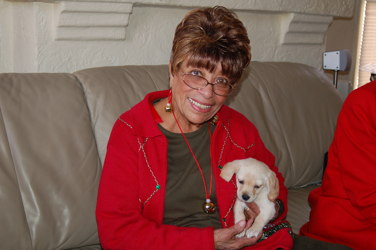 "This is the story of Adele Mathias, AKA Grandmother.  Her middle name is Christmas--for years she brought Christmas from soup to nuts and a sleigh full of presents from her Orange County home to her 5 grandsons and their very tired parents.  This Christmas, the 2nd eldest, Ayo, flew in from DC, intent on finding a puppy for Grandmother.  Her dog Coco passed away earlier this year and she and her other dog ""Sister"" (a cocker spaniel) were still feeling blue. She had been looking for a puppy but could not find one. She was ecstatic and almost melted into a puddle when she saw this 8 week old pup she has named Angel. What a moment!"