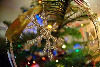 2008 Christmas-3697