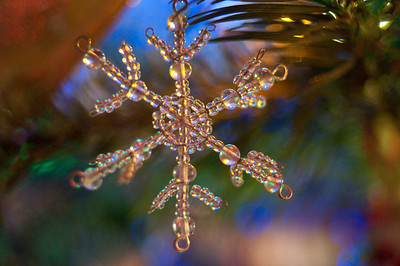 2008 Christmas-3686