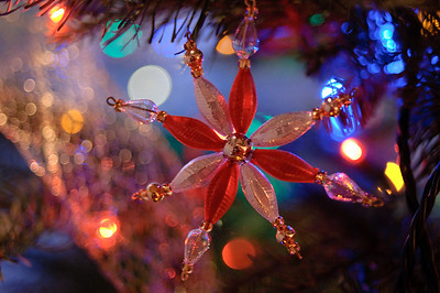 2008 Christmas-3589