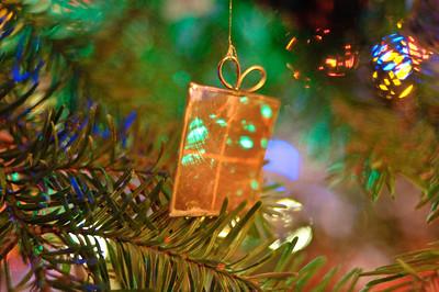 2008 Christmas-3619