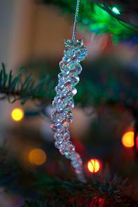 2008 Christmas-3636