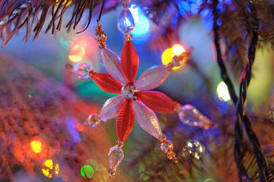 2008 Christmas-3646