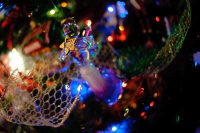 2008 Christmas-3702