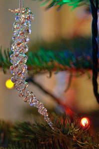 2008 Christmas-3595
