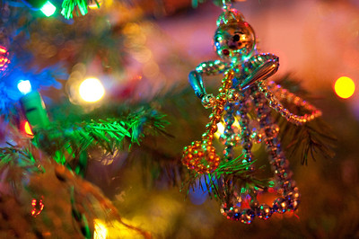 2008 Christmas-3665