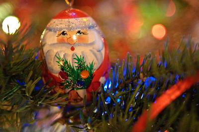 2008 Christmas-3607