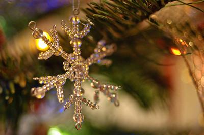 2008 Christmas-3602
