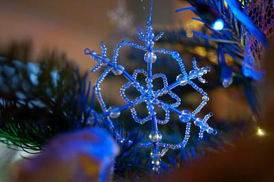 2008 Christmas-3638