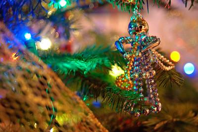 2008 Christmas-3615