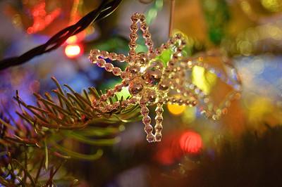 2008 Christmas-3682