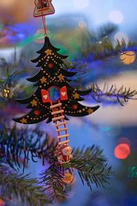 2008 Christmas-3606