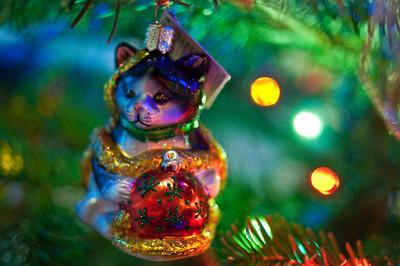 2008 Christmas-3601