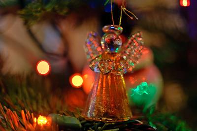 2008 Christmas-3592