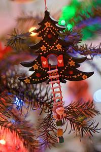 2008 Christmas-3658