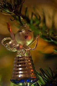 2008 Christmas-3600