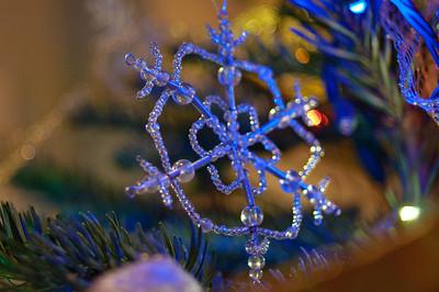 2008 Christmas-3591