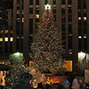 The tree in Rockefeller Center.