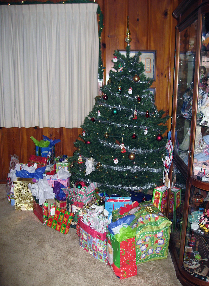 Dec 23.  The tree is about ready.