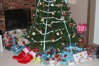 Our House Christmas 2010
