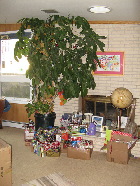 Our Christmas tree and the plethora of gifts.