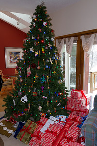 The 2010 Christmas tree