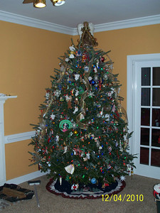 Sure wish we had a bigger tree and a few more ornaments!
