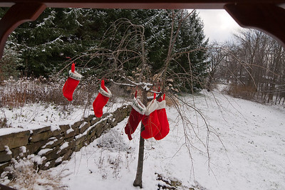 ...And the stockings were hung on some tree outside with care.