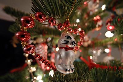 2011-12 Christmas 2011-7624