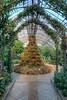 Mediterranean Christmas Tree