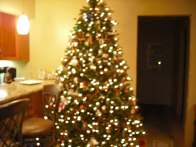 Janet and J.R.'s tree in their new addition