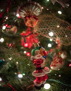 12-8-12 Christmas-0020